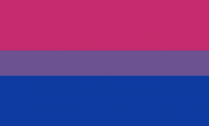 Revolutionary Flags of Queer Identity